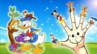 Chip and Dale Donald Duck Finger Family - Abc Song Finger Family Nursery Rhymes Lyrics