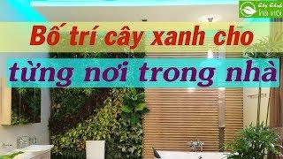 Những lưu ý bố trí cây xanh hợp phong thủy cho từng nơi trong nhà