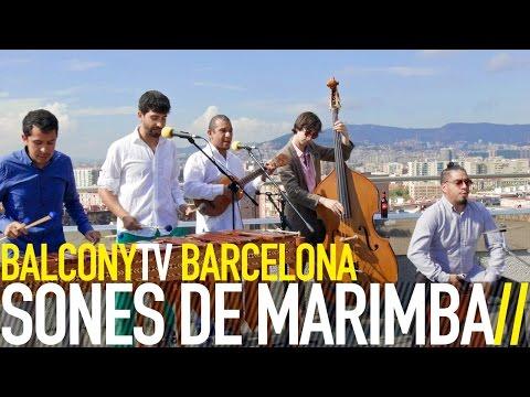 Sones De Marimba - La Distancia, Sones de Marimba