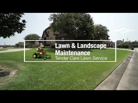 Professional Lawn and Landscape Maintenance Services in Sulphur, LA