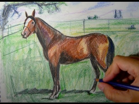 How To Draw A Horse With Colored Pencils Things To Draw