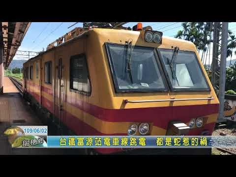 20200602 06 台鐵富源站電車線跳電 都是蛇惹的禍