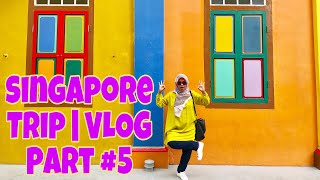 Singapore Trip 2018 | VLOG Part#5 : Exploring Sentosa, Chinatown, Little India