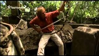 Pán hadov - Bojga zlatá