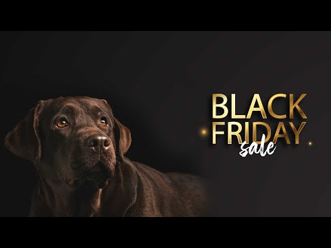 Black Friday BIG SALE|Special Offers & Best Discounts On Pets Supplies - Easyvetsupplies