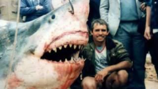 サメ -真実4-