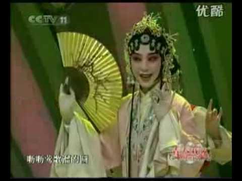 THE KING OF CHINESE  OPERA  —KUNQU,单雯  游园惊梦