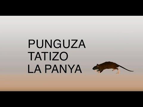 Jinsi ya kudhibiti panya - katika Kiswahili