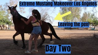 Leaving the Pen w/a Wild Mustang on Day Two | Los Angeles Extreme Mustang Makeover