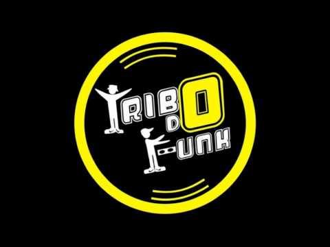Baixar Tribo Do Funk Tecno Melody 2011 - Arde Outra Vez
