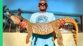 Cuba's Secret Meat Obsession!! Dangerous Crocodile Catch and Cook!!!