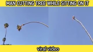 This video of a man cutting a palm tree has left people sh..