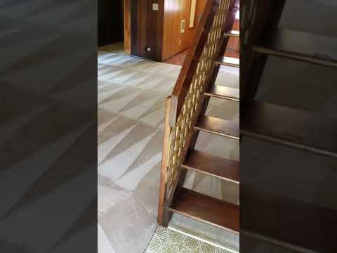 Eco friendly Carpet Cleaning Services Springfield