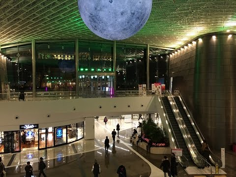 Inside the newly renovated and beautiful COEX Mall in Seoul, South Korea