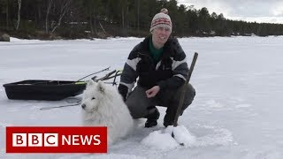 The women fighting for Lapland - BBC News