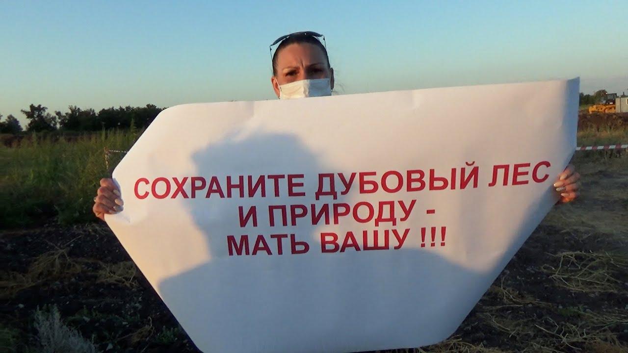 Волгоград: активисты потребовали прекратить строительство трассы в пойме