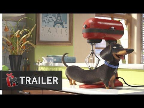 Tajný život mazlíčků (2016) - druhý oficiální dabovaný trailer