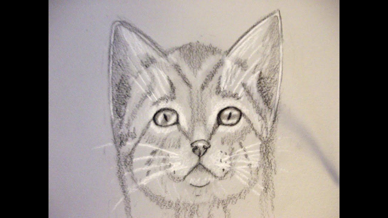 Come disegnare un gatto corso di disegno per bambini how to draw cat youtube for Disegni di cavalli a matita