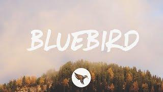 Miranda Lambert - Bluebird (Lyrics)