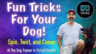 Fun Tricks for your dog! In VR 180! - Spin, Twirl, and Cones.
