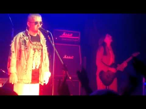 Красная Плесень - Буча мамба HD Live
