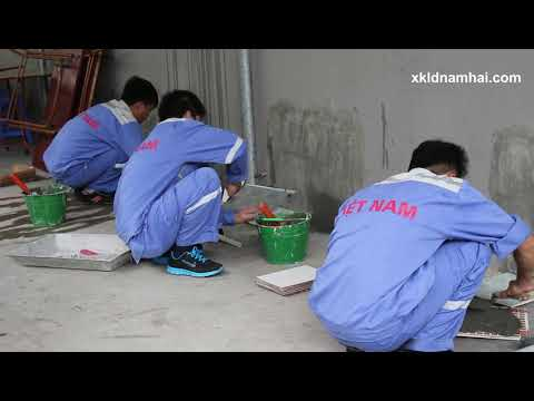 Thi tuyen don hang op lat gach di XKLD Nhat Ban