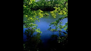 Calming and restful music- 3 HOURS  Classical Guitar  Background, Relax,Low,480x360, Mp4