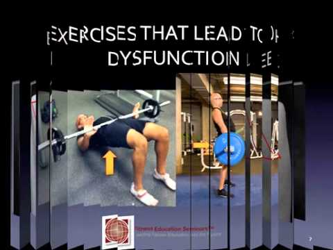 Corrective Exercise Strategies-The Best Glute Exercises