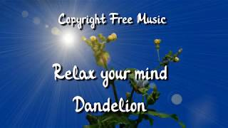 Copyright Free Relax Music - Relax your mind - Dandelion (Royality Free)