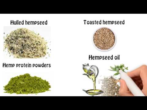 Bulk Hemp Food Ingredients shipped globally by the ton.