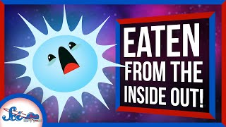 These Stars Are Being Eaten Alive from the Inside