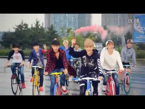EXO : AIMA MIX BICYCLE CF