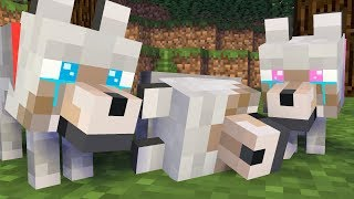 WOLF LIFE FULL MOVIE - All Episodes 1-5 Wolf Life Minecraft Animation