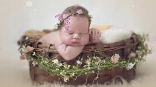 Lullaby Mozart Bedtime Music 🎵 Mozart for Babies Brain Development 🎵065