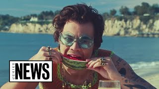 "Harry Styles' ""Watermelon Sugar"" Explained 