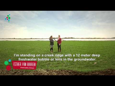 Climate TV: Water buffer