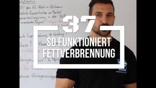 Built by Science #37 - So funktioniert Fettabbau!