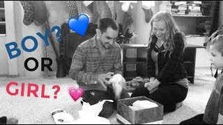 CHRISTMAS GENDER REVEAL!