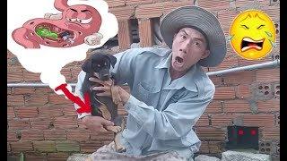 Chuyện Khó Tin Nhưng Có Thật .Con Chó Kỳ Lạ Nhất Thế Giới Với Sở Thích Quái Lạ