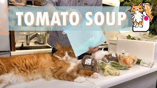 Making tomato soup