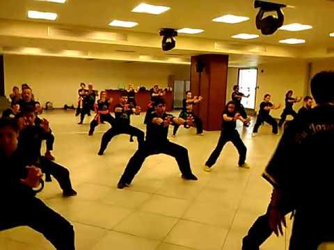 Martial Arts Seminar - May 2016