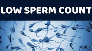 Nil sperm count treatment Videos - Playxem com