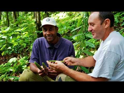 La vanille de Guadeloupe médaille d'or au Concours Général Agricole 2020