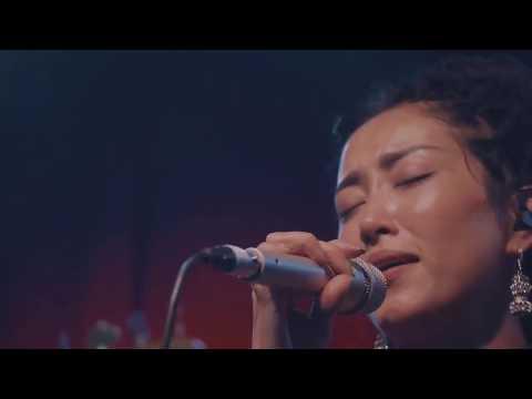 央吉瑪 (Yunggiema) 蓮花祕境 西藏墨脫音樂紀錄片