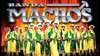Banda Machos: La culebra- La reina de las Bandas