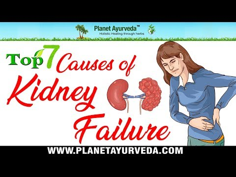 Top 7 Most Common Causes of Kidney Failure - Avoid Dialysis