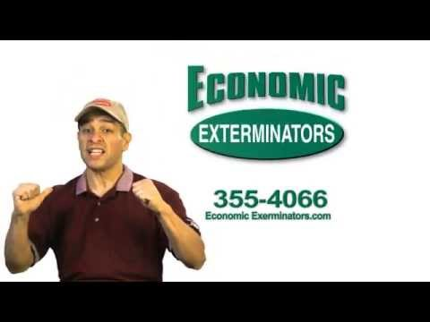 Economic Exterminators  Cockroach by the numbers talkEconomic Exterminators Cockroach by the numbers talk