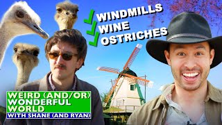 Shane & Ryan Explore California's Quaintest Town • Weird Wonderful World