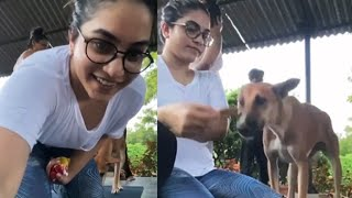Tollywood actress Punarnavi feeds street dog, viral video..