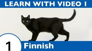 Learn Finnish with Video - Learning Finnish Vocabulary for Common Animals Is a Walk in the Park!